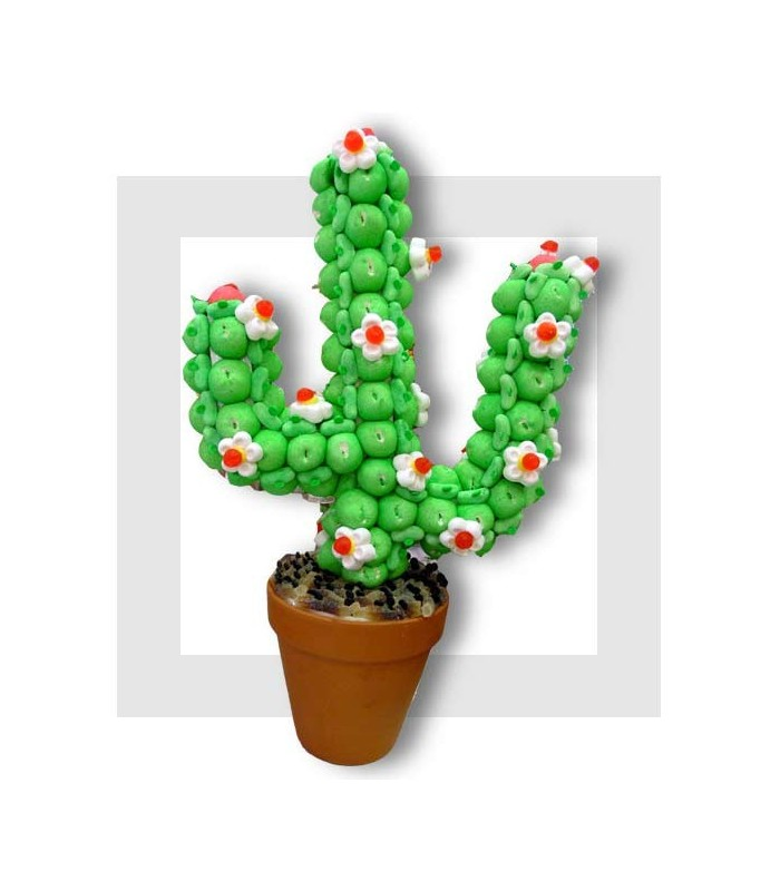 cactus composition de bonbon. Black Bedroom Furniture Sets. Home Design Ideas