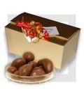 NOIX DU BRESIL chocolat