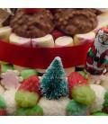 LA Plagne - Gâteau de bonbons pour les fêtes de fin d'année-gros plan
